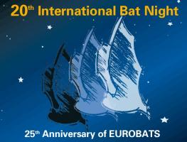 international bat night