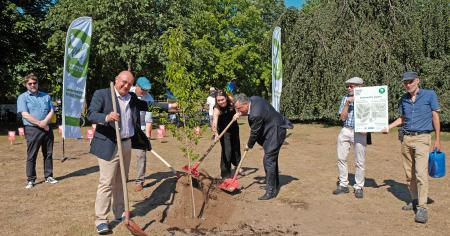 A Tree of Peace for Bonn's Rheinaue Park